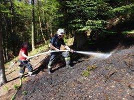 Waldbrand Munderfing